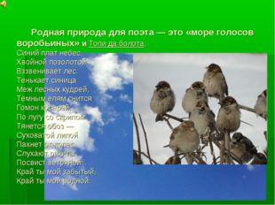 Родная природа для поэта — это «море голосов воробьиных» и Топи да болота, С