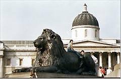 landseer lions