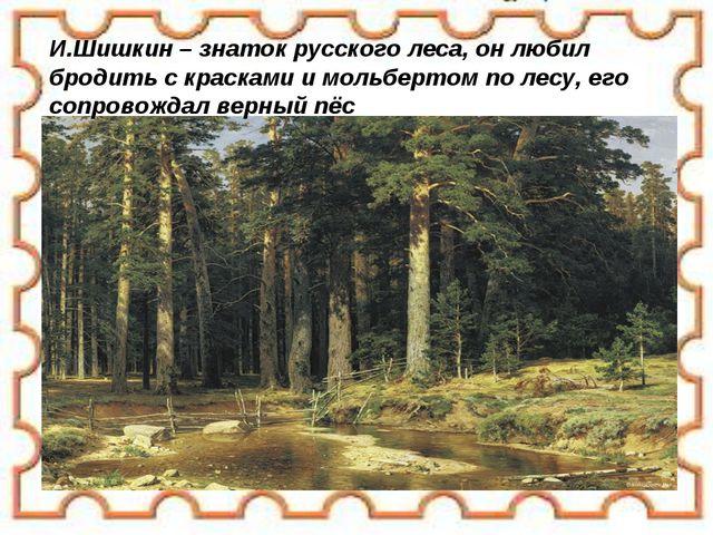 И.Шишкин – знаток русского леса, он любил бродить с красками и мольбертом по...