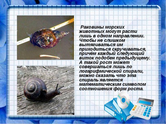 Раковины морских животных могут расти лишь в одном направлении. Чтобы не сли...