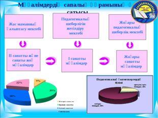 Мұғалімдердің сапалық құрамының өсу сатысы Педагогикалық шеберлігін жетілдір