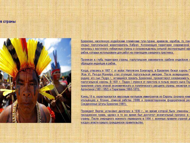 История страны Бразилию, населенную индейскими племенами тупи-гурани, аравако...