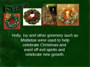 Holly, Ivy and other greenery such as Mistletoe were used to help celebrate C