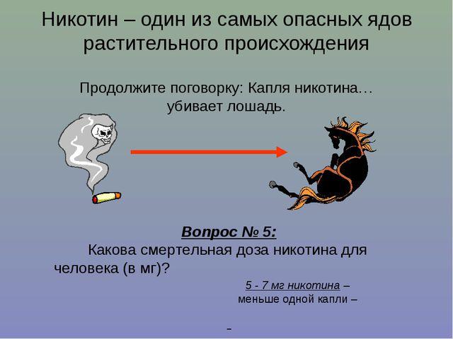 Никотин – один из самых опасных ядов растительного происхождения Продолжите п...