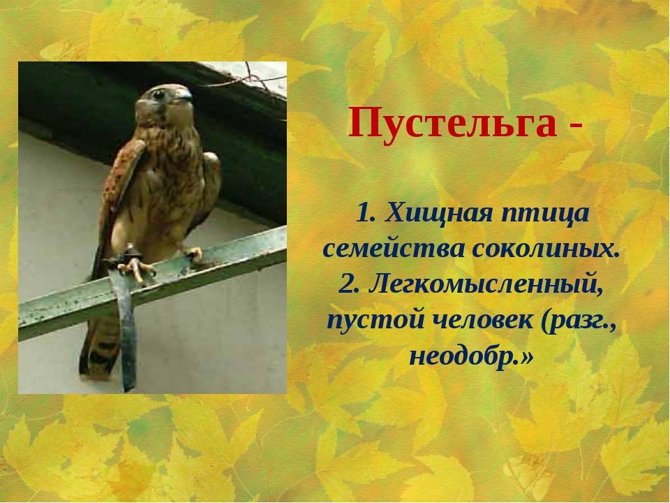1. Хищная птица семейства соколиных. 2. Легкомысленный, пустой человек (разг....
