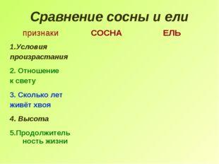 Сравнение сосны и ели признакиСОСНАЕЛЬ 1.Условия произрастания 2. Отношение