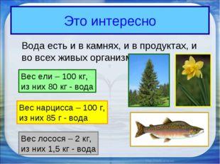 Это интересно Вода есть и в камнях, и в продуктах, и во всех живых организма
