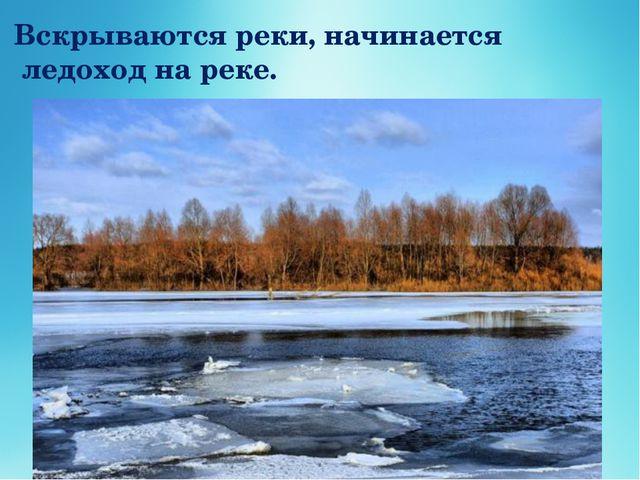 Вскрываются реки, начинается ледоход на реке.