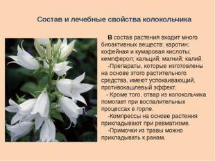 В состав растения входит много биоактивных веществ: каротин; кофейная и кума