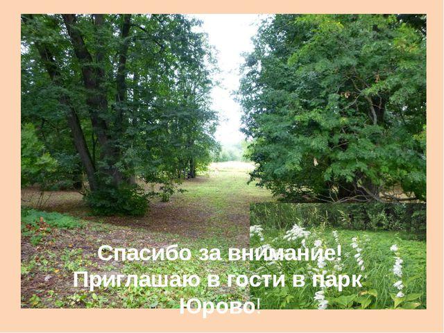 Спасибо за внимание! Приглашаю в гости в парк Юрово!