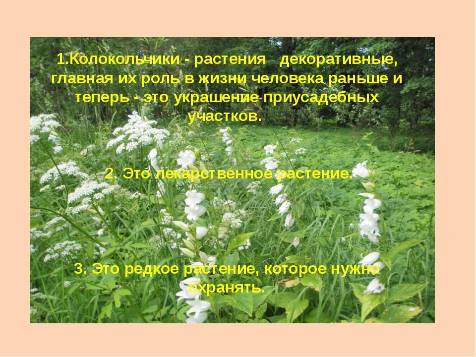 1.Колокольчики - растения декоративные, главная их роль в жизни человека рань...