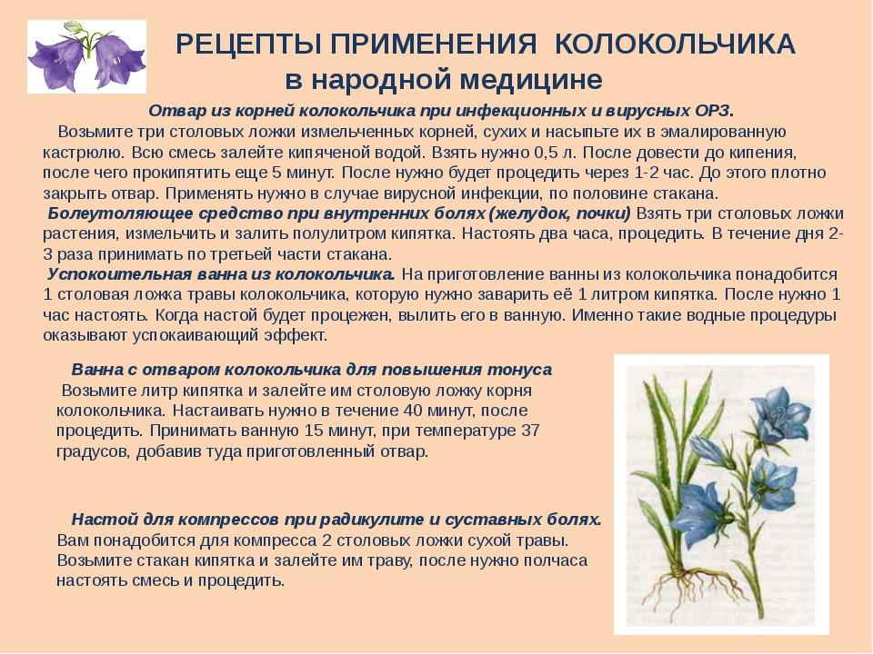 РЕЦЕПТЫ ПРИМЕНЕНИЯ КОЛОКОЛЬЧИКА в народной медицине Отвар из корней колоколь...