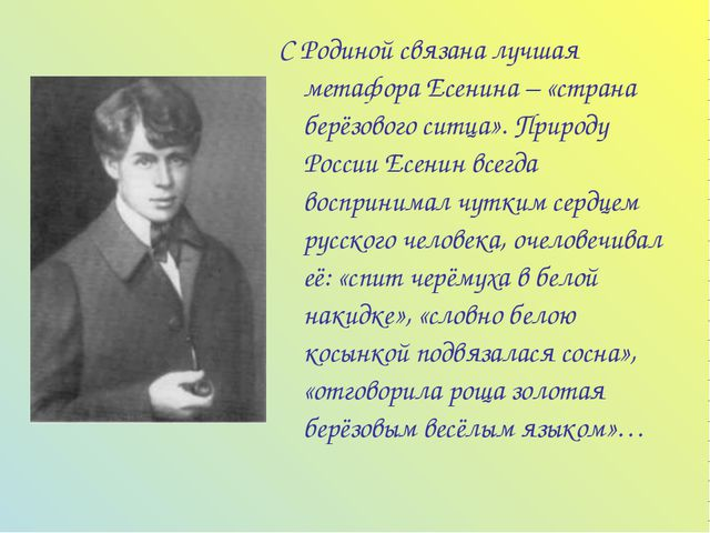 С Родиной связана лучшая метафора Есенина – «страна берёзового ситца». Природ...