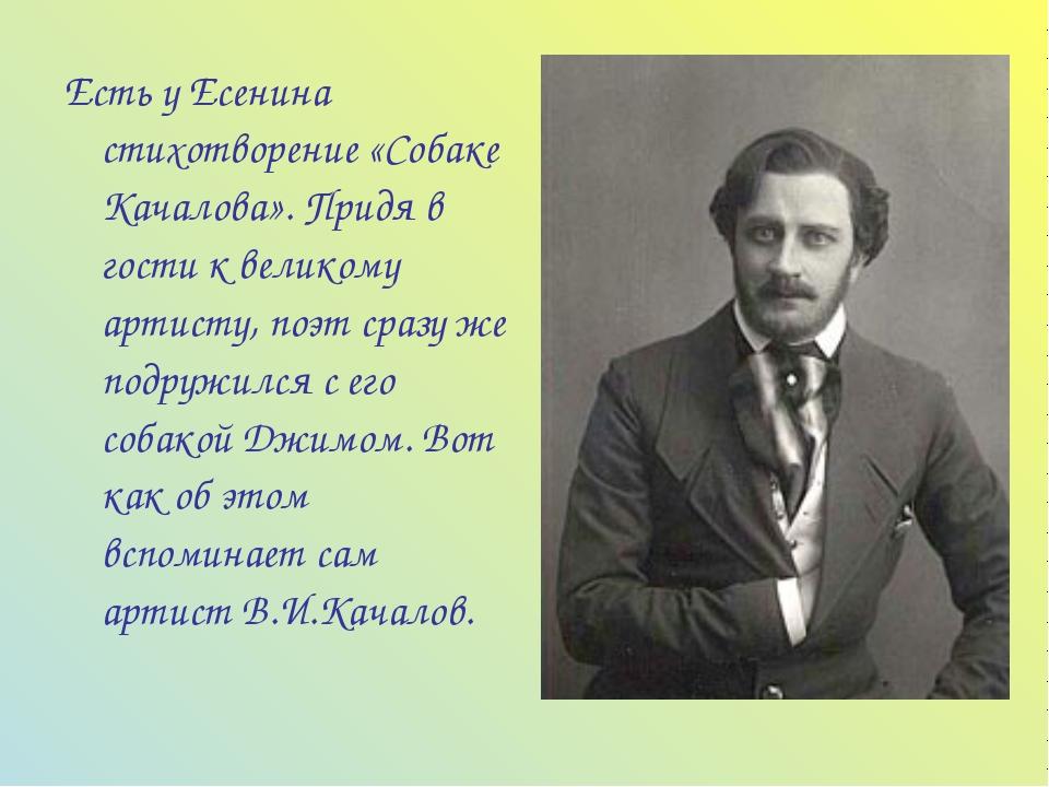 Есть у Есенина стихотворение «Собаке Качалова». Придя в гости к великому арти...