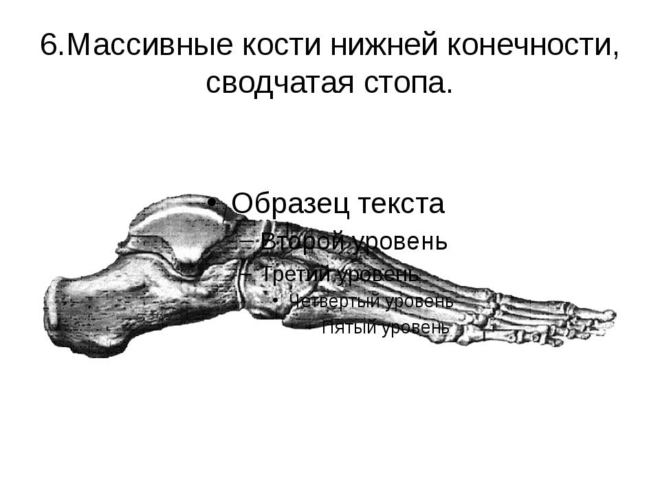 6.Массивные кости нижней конечности, сводчатая стопа.
