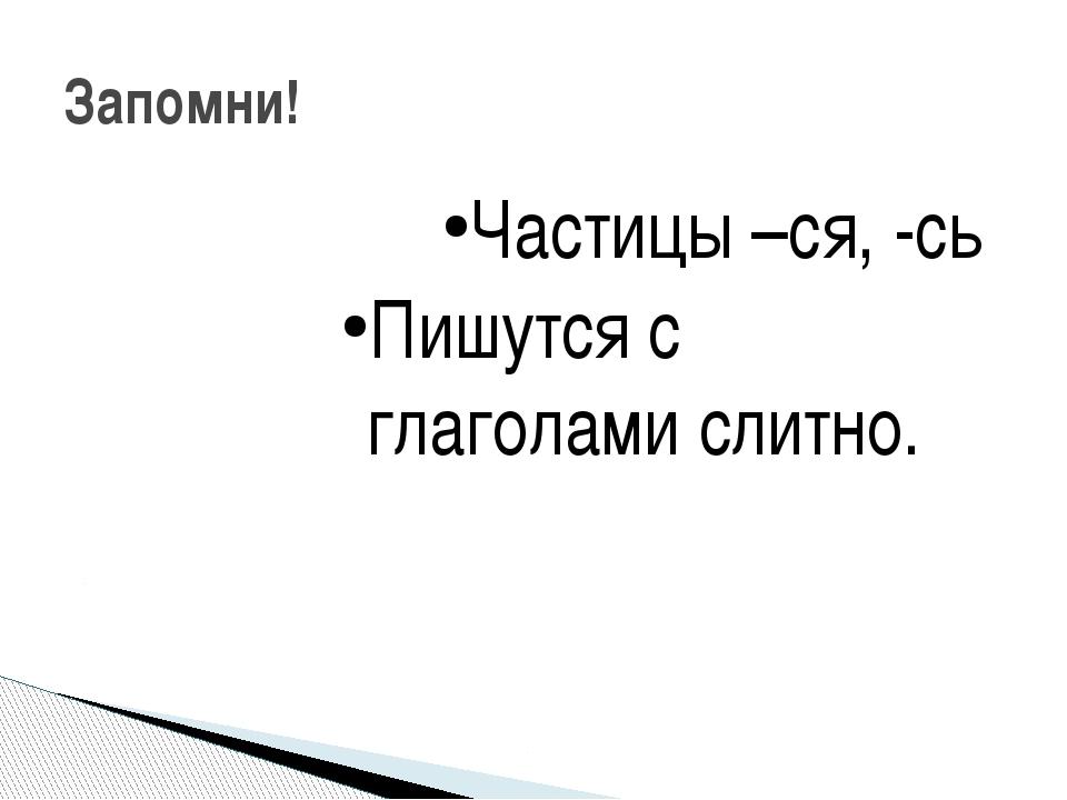 Частицы –ся, -сь Пишутся с глаголами слитно. Запомни!