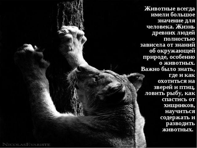Животные всегда имели большое значение для человека. Жизнь древних людей полн...