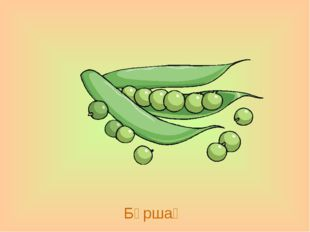 Бұршақ