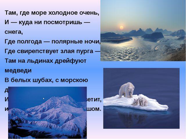 Там, где море холодное очень, И — куда ни посмотришь — снега, Где полгода — п...