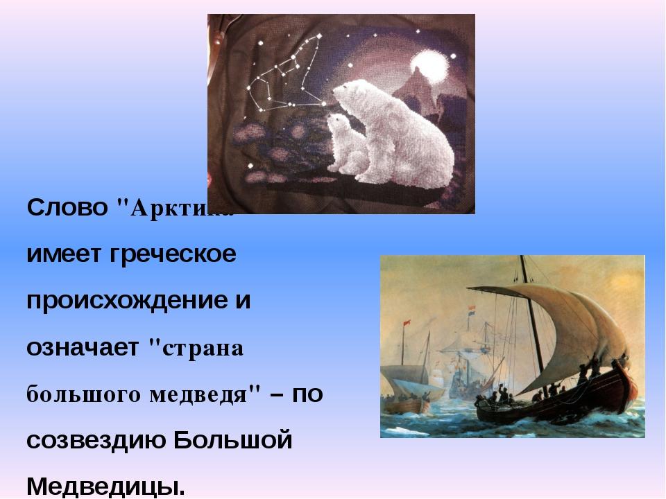 """Слово """"Арктика"""" имеет греческое происхождение и означает """"страна большого мед..."""