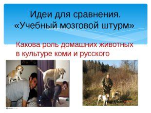 Какова роль домашних животных в культуре коми и русского народа? Идеи для сра