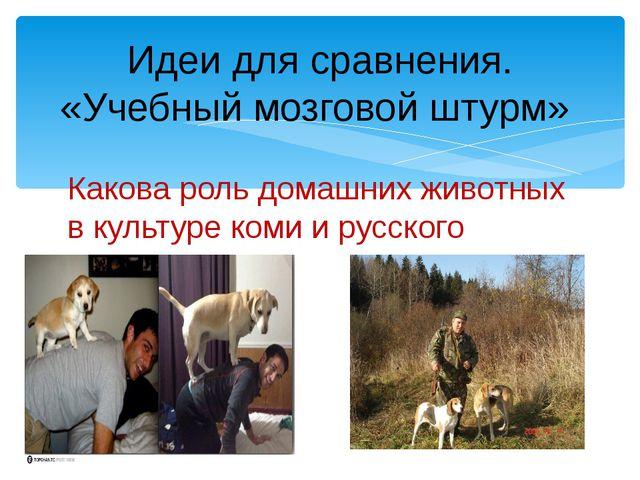 Какова роль домашних животных в культуре коми и русского народа? Идеи для сра...