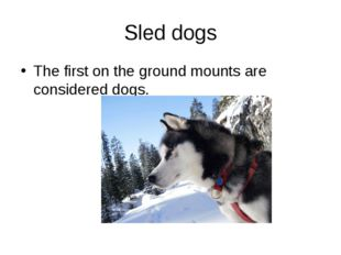 Sled dogs The first on the ground mounts are considered dogs.