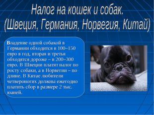 Владение одной собакой в Германии обходится в 100–150 евро в год, вторая и т