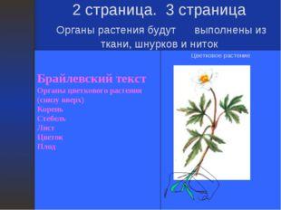 2 страница. 3 страница Органы растения будут выполнены из ткани, шнурков и ни