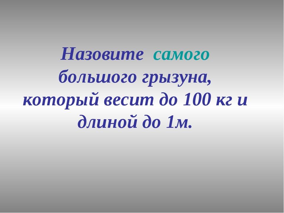 Назовите самого большого грызуна, который весит до 100 кг и длиной до 1м.