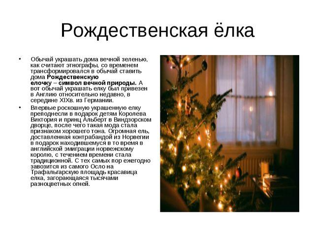 Рождественская ёлка Обычай украшать дома вечной зеленью, как считают этнограф...