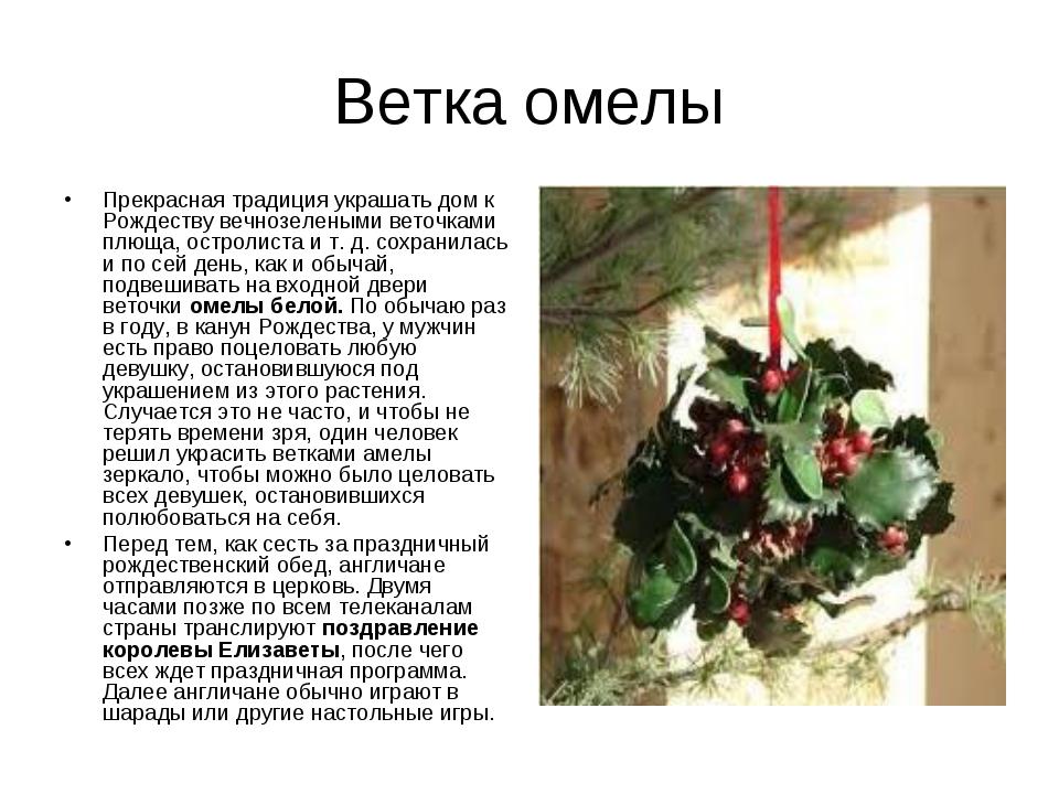 Ветка омелы Прекрасная традиция украшать дом к Рождеству вечнозелеными веточк...