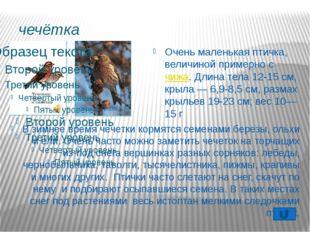 Воробей Воробей- птица самостоятельная: в обиду себя не даст и голодным не ос