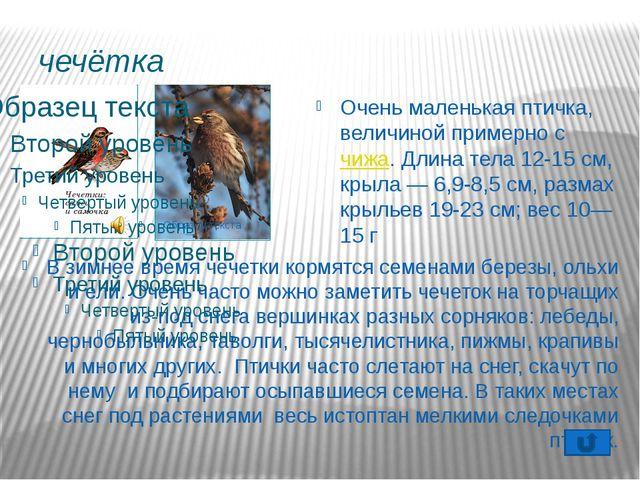 Воробей Воробей- птица самостоятельная: в обиду себя не даст и голодным не ос...