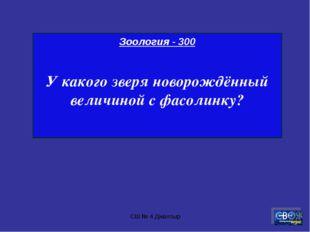 СШ № 4 Джалтыр Зоология - 300 У какого зверя новорождённый величиной с фасоли