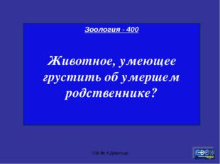 СШ № 4 Джалтыр Зоология - 400 Животное, умеющее грустить об умершем родственн