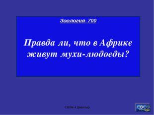 СШ № 4 Джалтыр Зоология- 700 Правда ли, что в Африке живут мухи-людоеды? СШ №