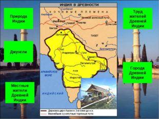 Природа Индии Джунгли Города Древней Индии Труд жителей Древней Индии Местные