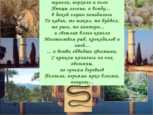 В ветвях деревьев гнездились, шумели, порхали и пели Птицы лесные, и всюду.....