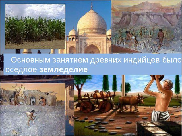 Основным занятием древних индийцев было оседлое земледелие