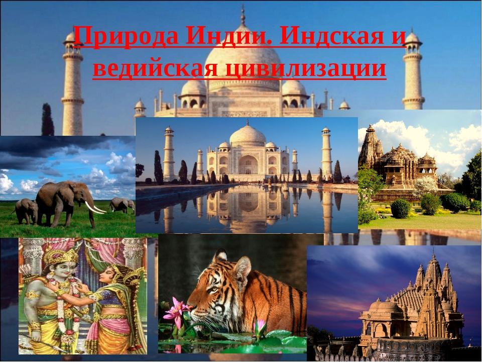 Природа Индии. Индская и ведийская цивилизации