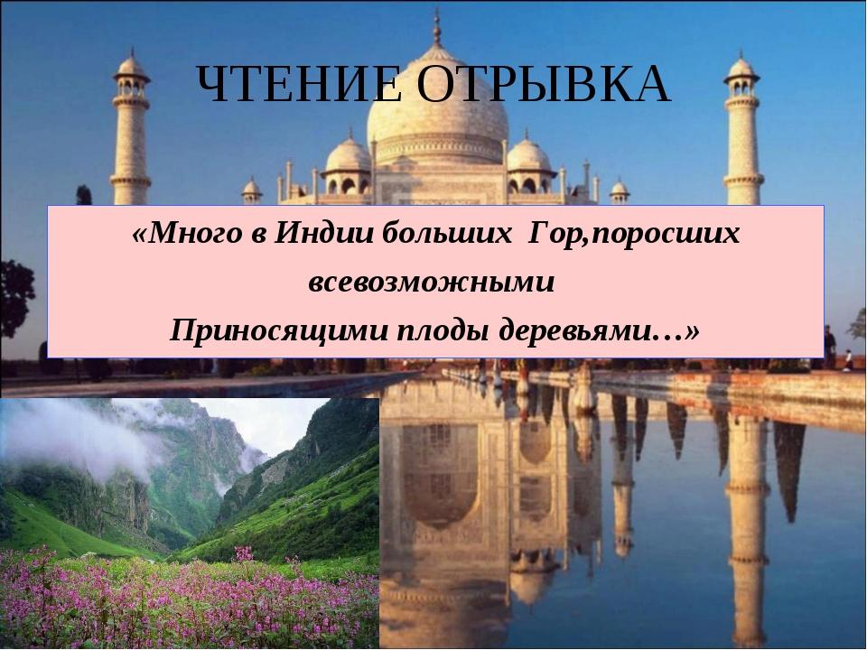 ЧТЕНИЕ ОТРЫВКА «Много в Индии больших Гор,поросших всевозможными Приносящими...