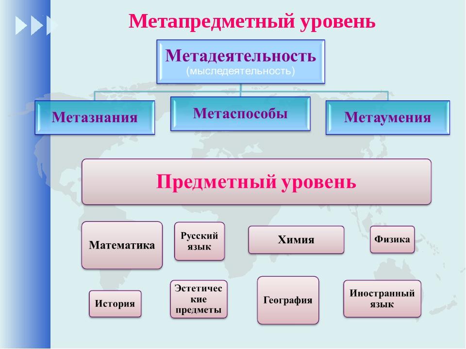 Метапредметный уровень