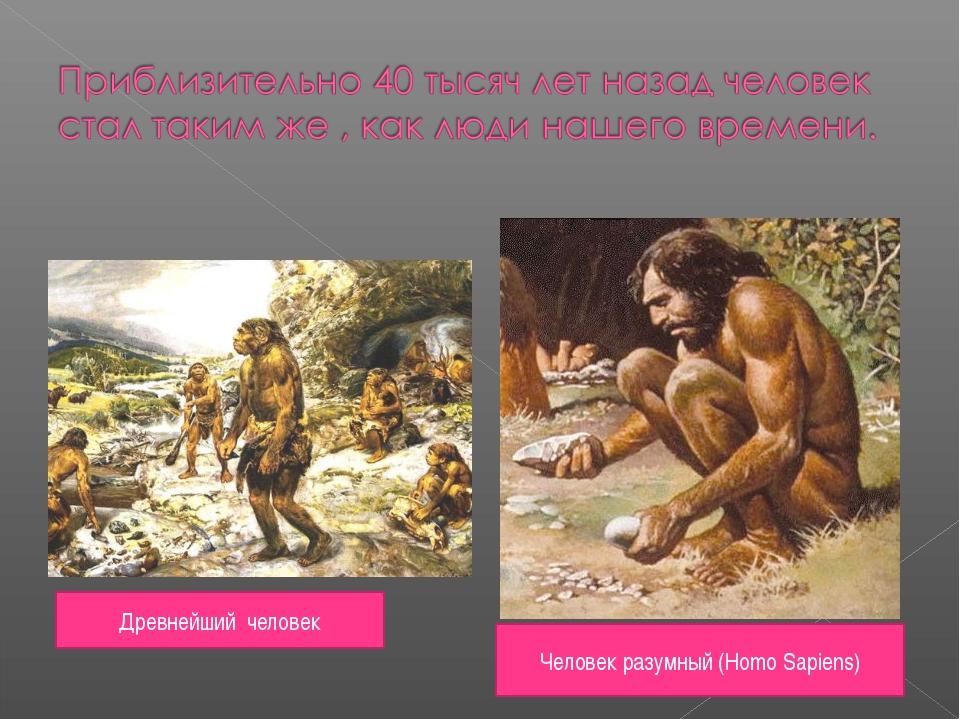 Древнейший человек Человек разумный (Homo Sapiens)