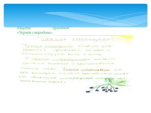 Защита проектов «Черная смородина»