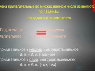 1. Имена прилагательные во множественном числе изменяются только по падежам