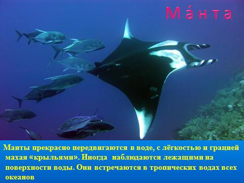 hello_html_m5b72b0ab.png
