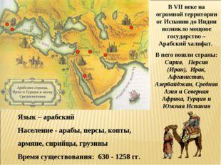 В VII веке на огромной территории от Испании до Индии возникло мощное государ