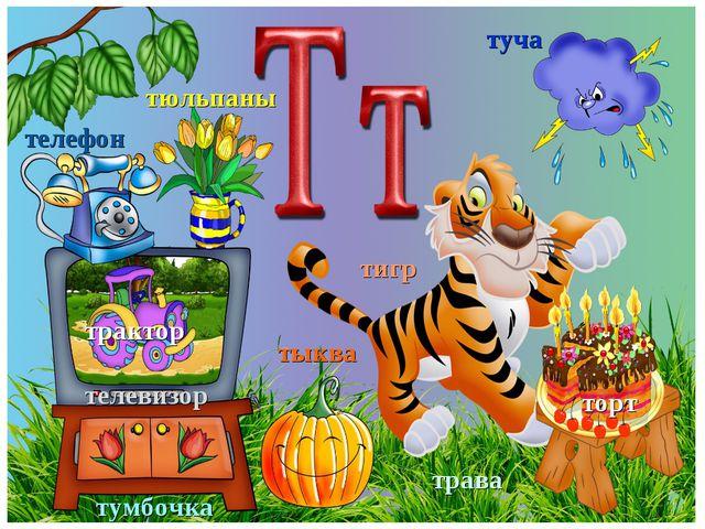 телевизор тюльпаны телефон трактор тумбочка тыква туча торт тигр трава