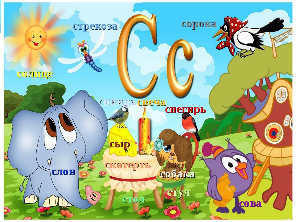 слон сова сорока собака солнце стрекоза синица снегирь свеча сыр стол стул ск...